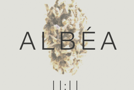 """Albéa, un nouveau duo à la douceur folk se révèle avec leur premier titre """"Onze onze""""."""